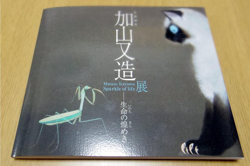 『生誕90年 加山又造展~生命の煌めき』日本画家-加山又造の展覧会